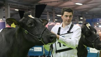 McCormick family takes centre stage at the Royal Ulster Winter Fair
