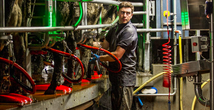 Dairy focus: 'We need to park our drive for efficiency and focus on people'