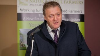 'CAP changes need to reflect the majority of farmers' – INHFA