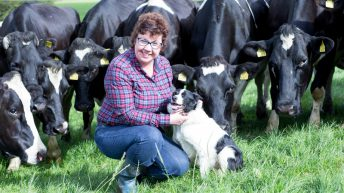 Three generations of farming at Crettyard inspires Sixsmith's new book