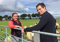 TV tonight: Could genetics hold the key for Irish farming?