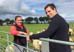 TV tonight: Could genetics hold the key for Irish farming?