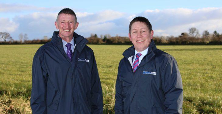 Danske appoints new Northern Ireland head of agri-business