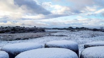 Weather warnings for wind, snow and ice issued