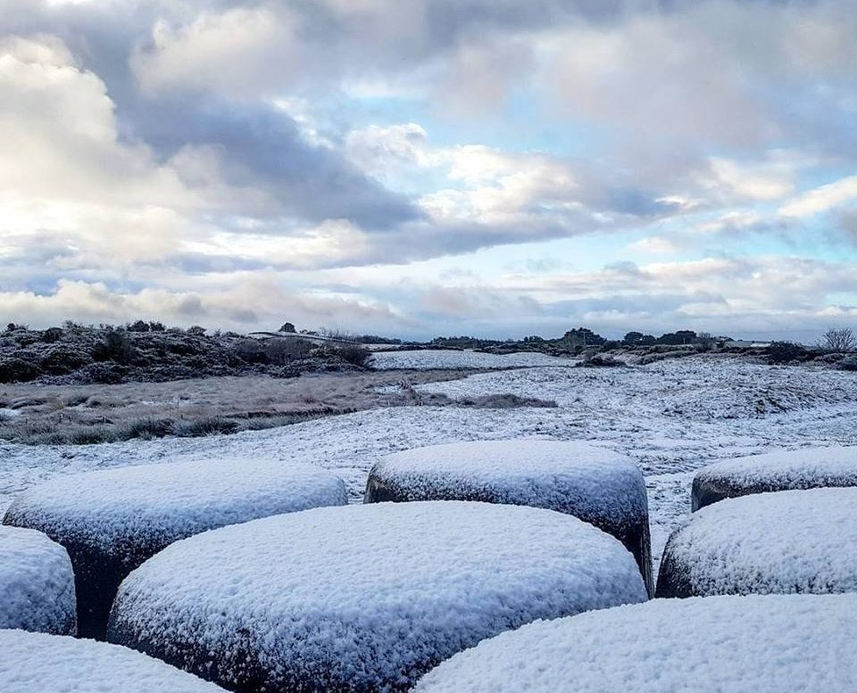 Snow on bales in Co. Down