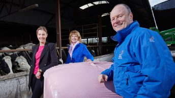 'Wrap It Pink' campaign raises €17,500 for the Irish Cancer Society in 2017