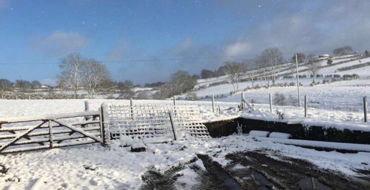 Disruptive snow showers on the cards as cold snap set to hit Ireland