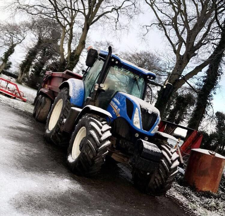 Pics: Your day on the farm in the snow