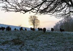 Wintry start to week with hail and snow in parts