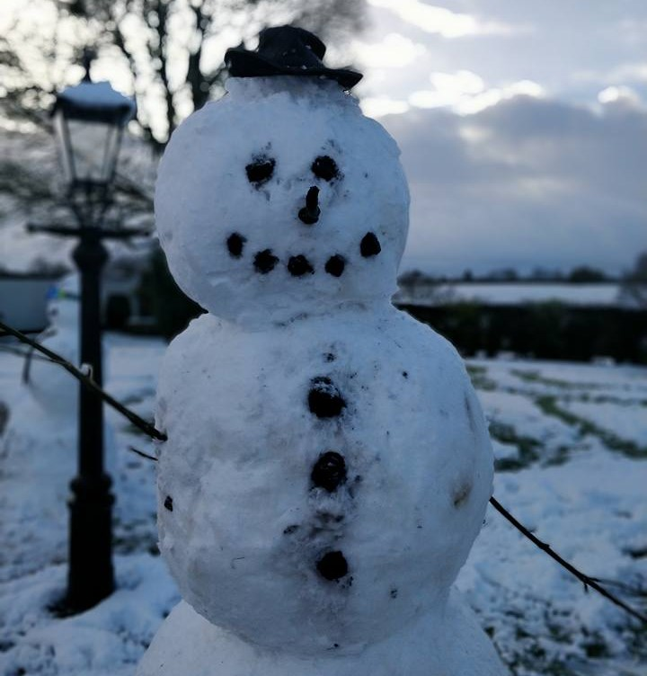 Snowman on a farm in Co. Down