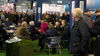 New winter show on the cards for beef breeders
