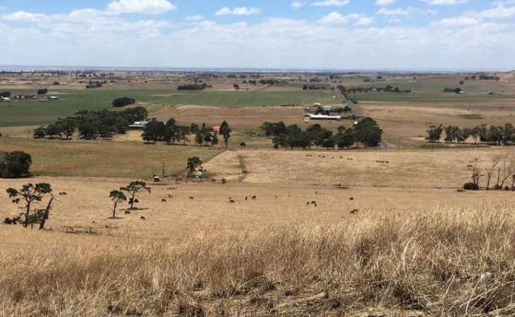Dairy farming in a volanic valley and exporting to China: Heather reports from Australia