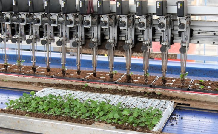 4 out of 5 UK growers say agri-robotics could help their businesses