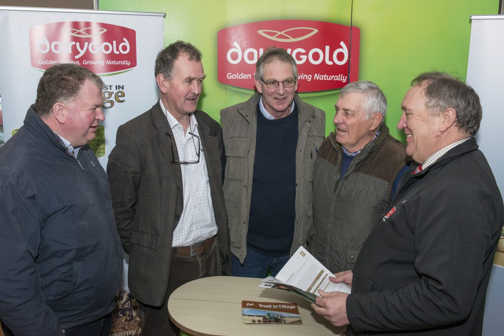 dairygold beans
