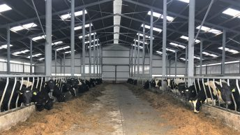 Buildings focus: 168 cubicles facilitating expansion in Co. Kilkenny