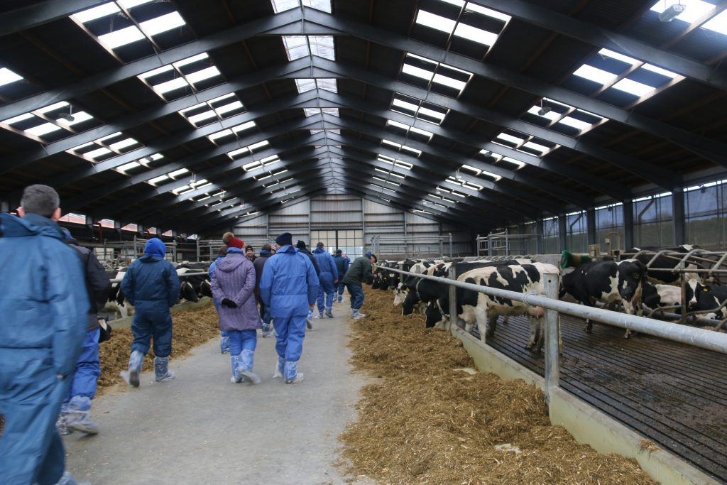 Open day, shed, Greenmount, CAFRE Dairy open days