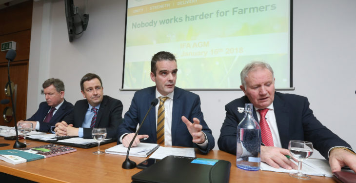 IFA recorded €1.4 million operating loss over the last year