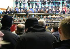 Further movement restrictions announced for BVD-status cattle