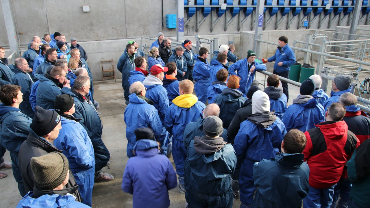 One in three Northern Ireland dairymen turn out to Dairy Open Days