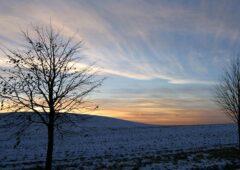 Met Eireann issues Status Orange wind warning for the west
