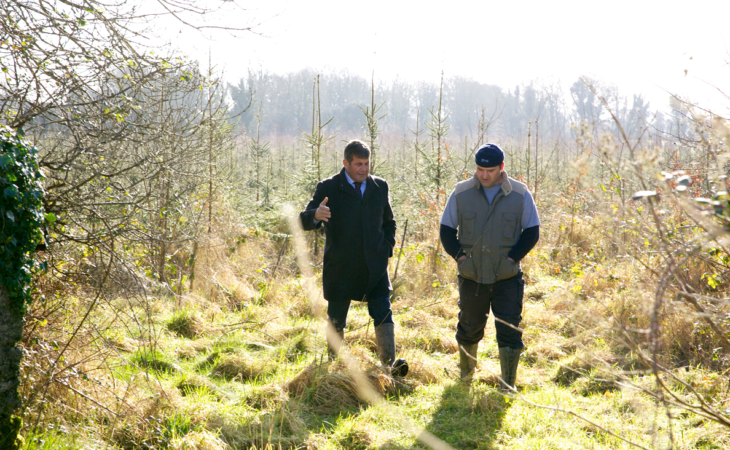 Doyle highlights importance of forestry in Galway
