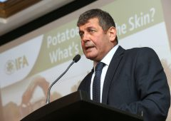 Potatoes are the bedrock of the horticulture sector – Doyle