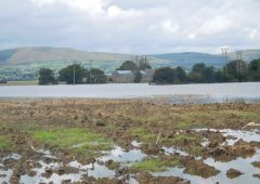气候变化在戈尔韦农业研究进展