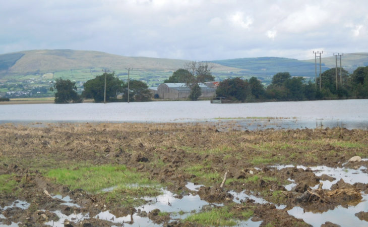 Climate change farm study in progress in Galway