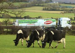 Glanbia announces milk price for September supplies