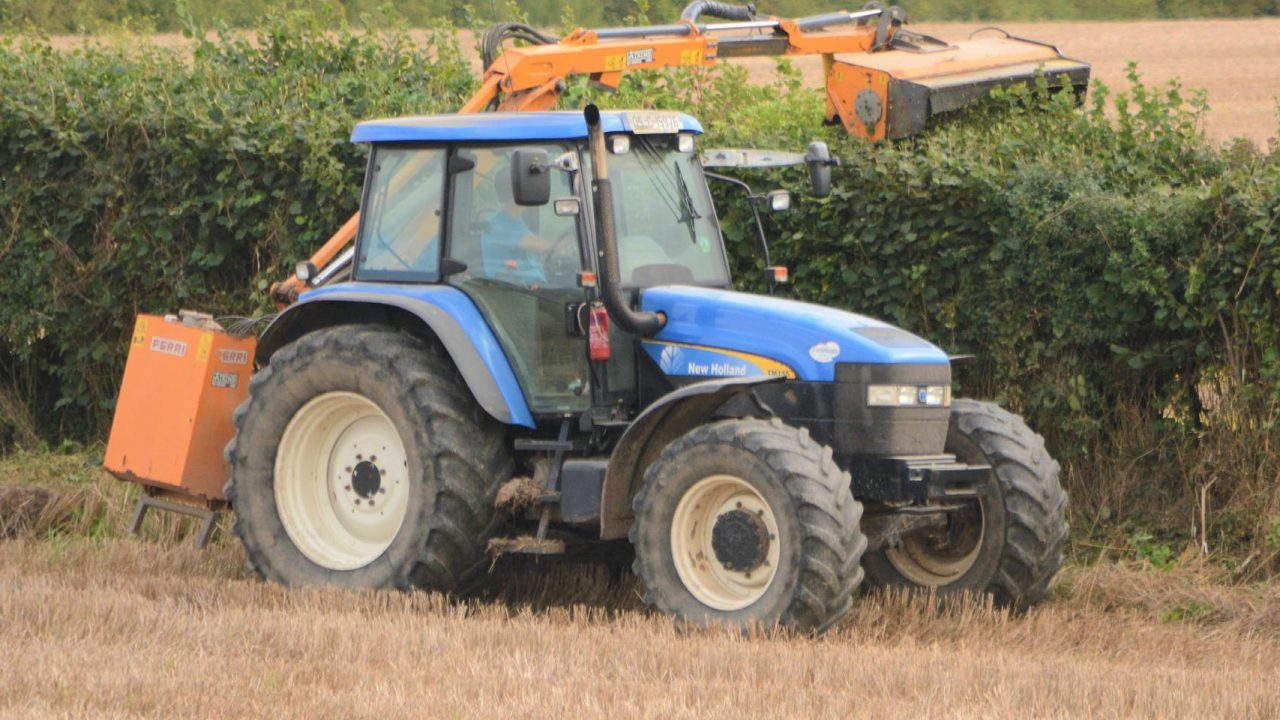 3 fined for out-of-season hedge-cutting in Westmeath