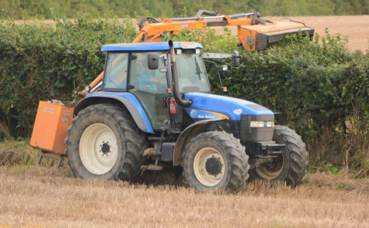 Hedgecutting ban to come into effect at the start of next month