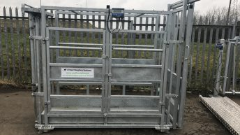 Safety focus: Are your livestock handling facilities up to the task?