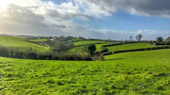 Dairy focus: A time of change on Monaghan's drumlin hills