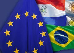43 European farm organisations sign declaration against Mercosur