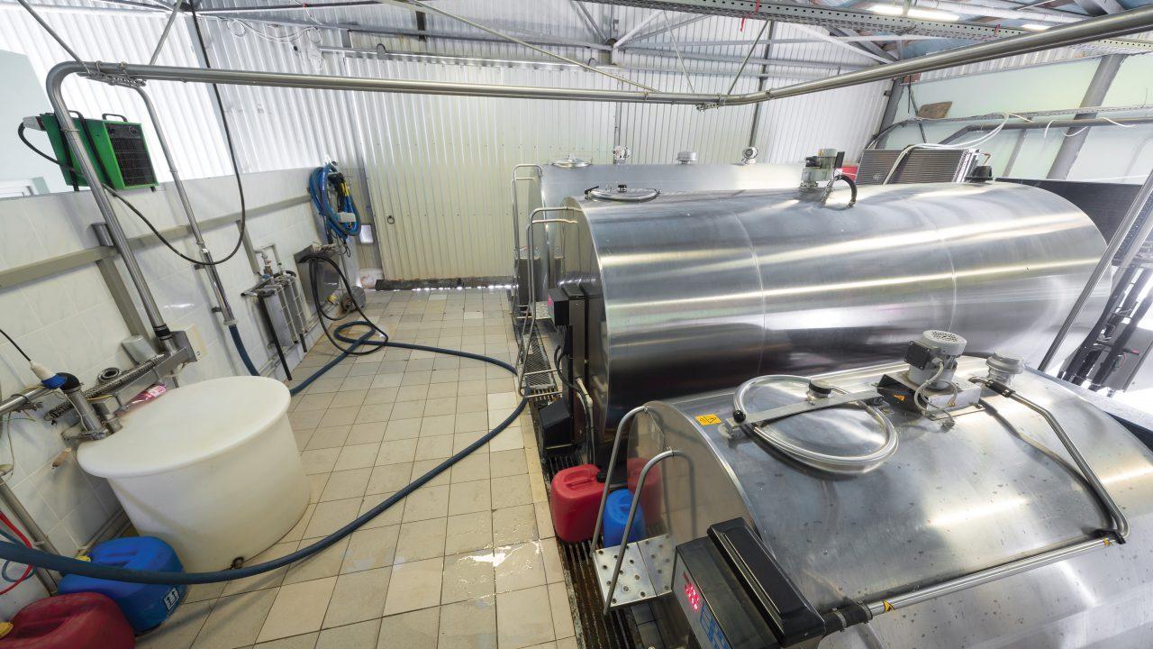 Dairy 'market rally' makes milk price cuts 'suspicious' – ICMSA