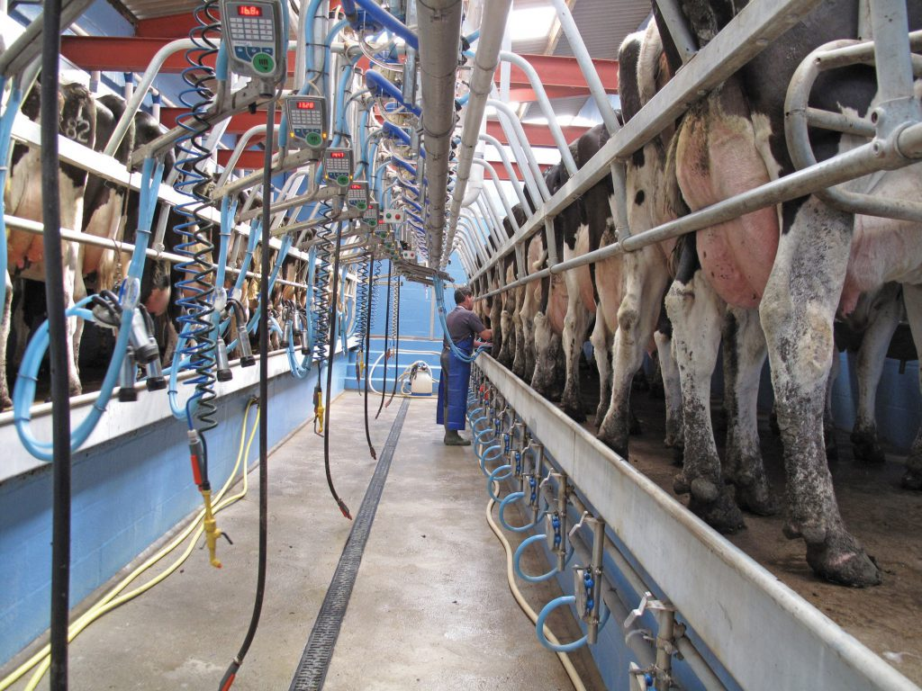 icmsa Ornua PPI kerry dairy demand processors peak Once a day milk price march ornua ppi