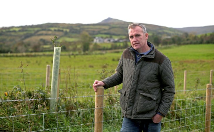How trees are solving farm problems in the Glens of Antrim