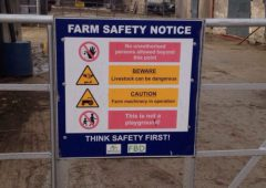 Potential for discussion groups to boost farmer health and safety – research