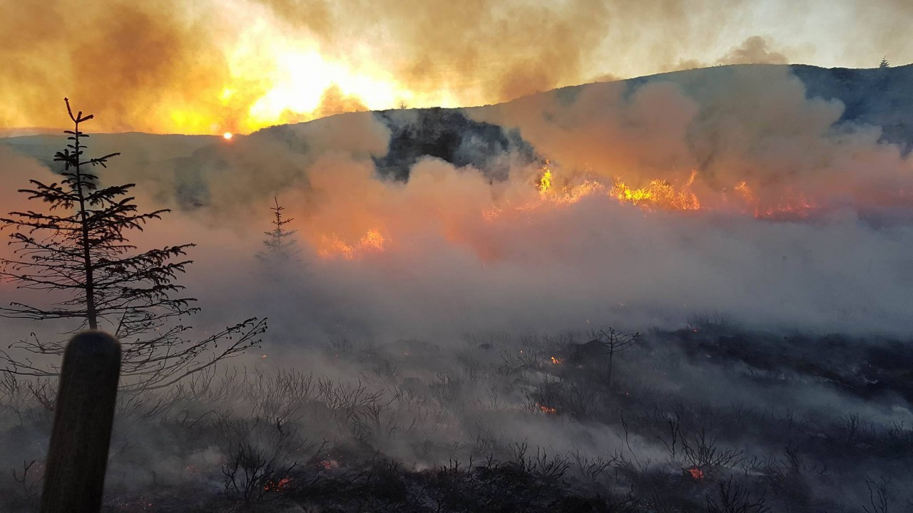 Commission publishes guidelines on land-based wildfire prevention