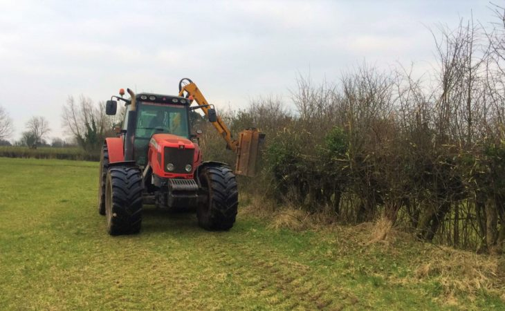 Just days left before hedge-cutting ban comes into effect