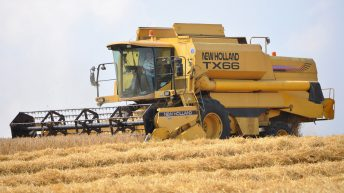 Cereal production up 3.5% last year – on less land