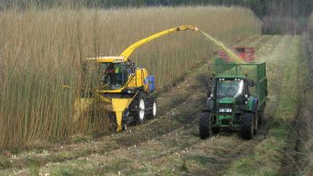 'Tillage farmers will not be scapegoated again with another hare-brained scheme'