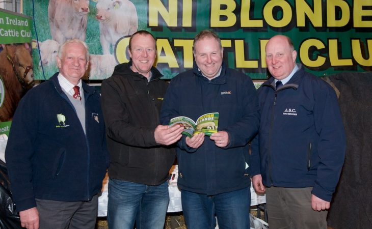 Beef societies join forces for first time for bumper spring bull sale