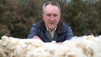 Ulster Wool's new rep set to take producers through turbulent times