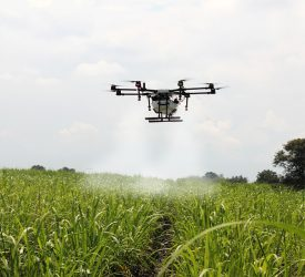 创新战略规定了为NI农场获得AG-Tech的计划