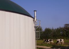 Kildare company using anaerobic digestion wins at SEAI Energy Awards