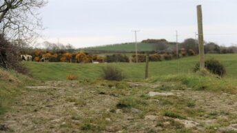 Environmental Farming Scheme open for applications