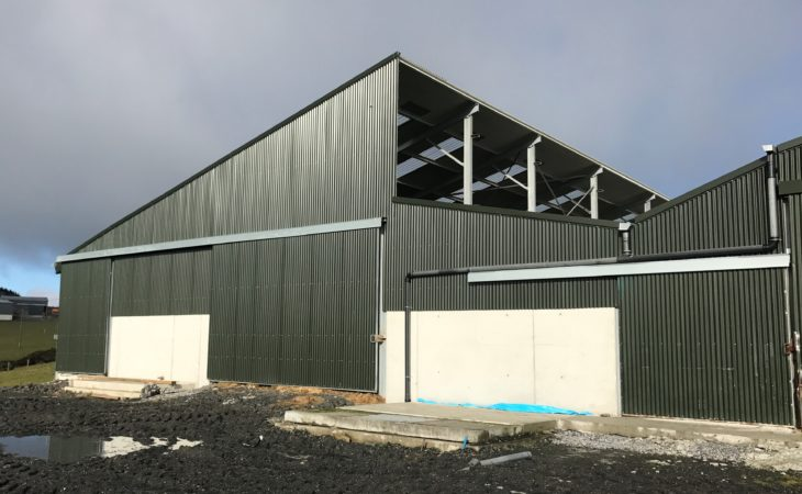 Buildings focus: A new beef shed dictated by an existing unit in Co. Tipperary