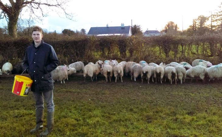 Galway family's farm transfer 'an inspiration' – National Rural Network