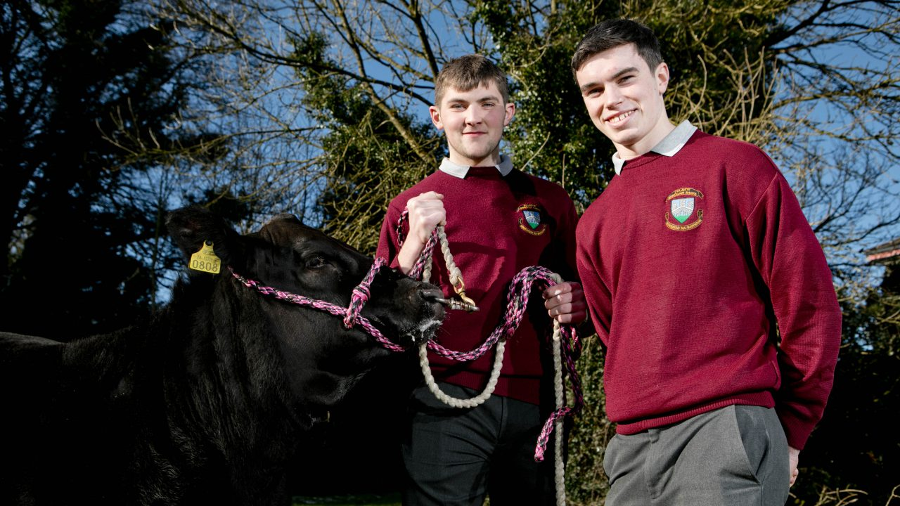 Applications open for Certified Irish Angus Beef Schools Competition 2019